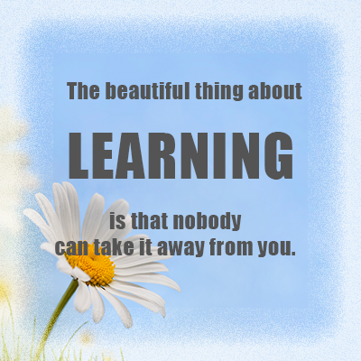 The beautifu thing about learning is that nobody can take it away from you.